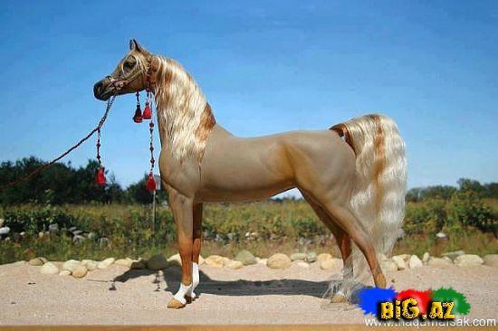 Dünyanın ən gözəl atları - FOTO