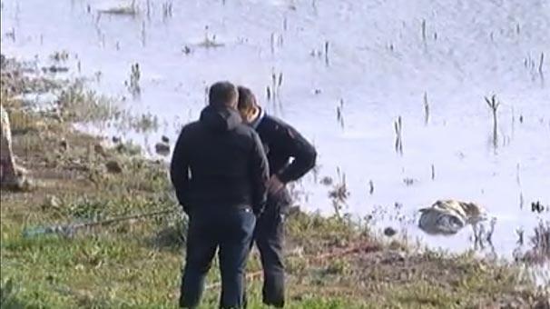 TÜKÜRPƏDƏN HADİSƏ: Balıqçıların toruna cəsəd düşdü - 5 yaşlı uşağı... - FOTO